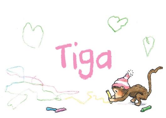 Tigo-buitenkant-zachtrose