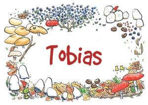 tobias-voorkant-font