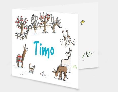 timo-vouw-grijs