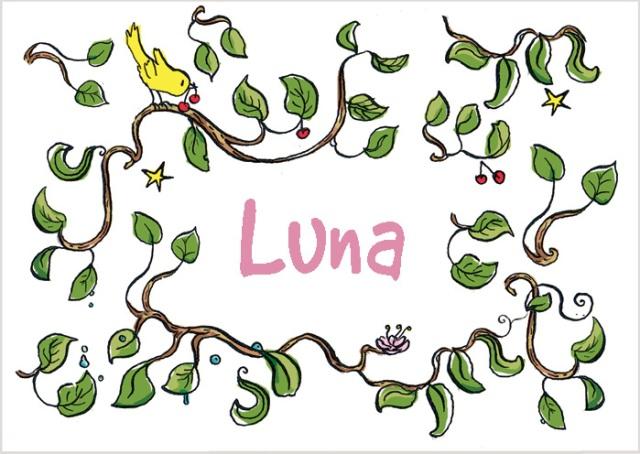 Luna-voorkant