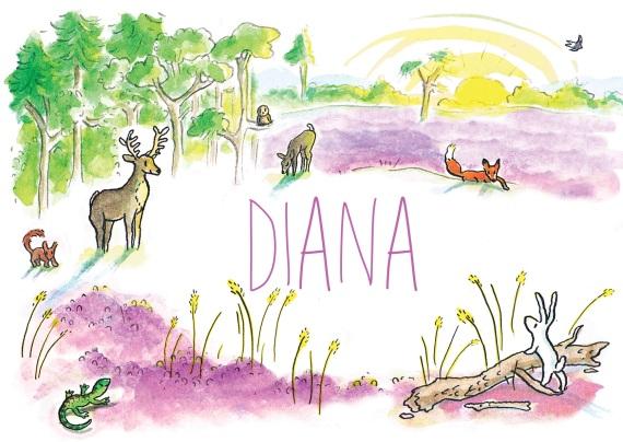 diana-voorkant2