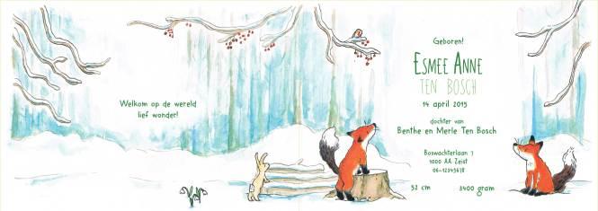vos-2-binnenkant-winter