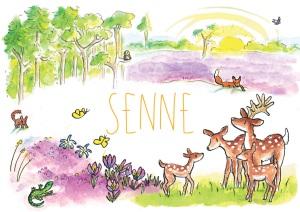Senne-voorkant