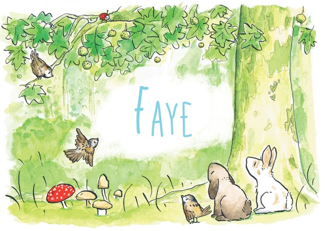Faye-Bos