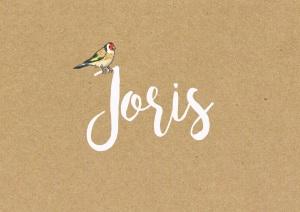 Joris-voorkant