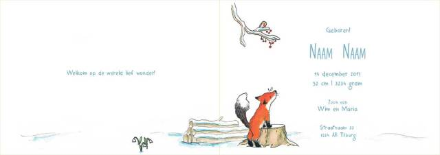 Vos-simpel-binnenkant-winter