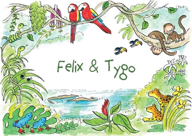 Felix&Tygo-voorkant