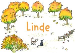 Linde-voorkant-herfst