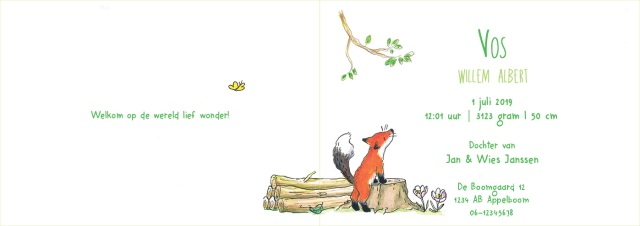 Vos-binnenkant-lente-simpel